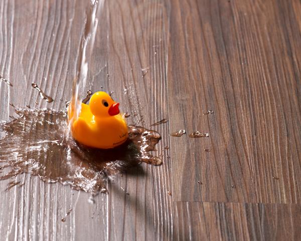 Eine Gummiente wird auf Holzboden mit Wasser übergossen